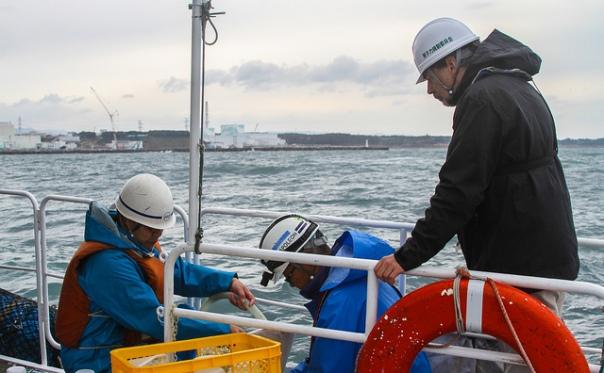 IAEA ocean testing