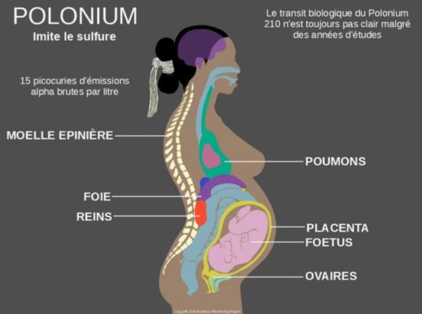 Polonium.png