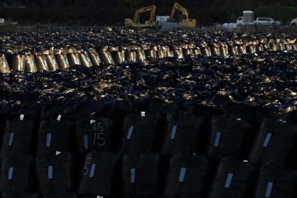 Rad waste bags